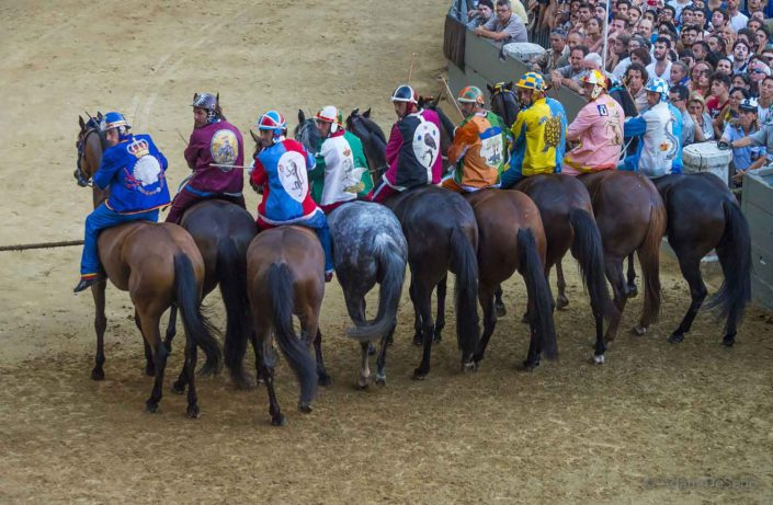 Ready To Start, Palio, Siena, Italy
