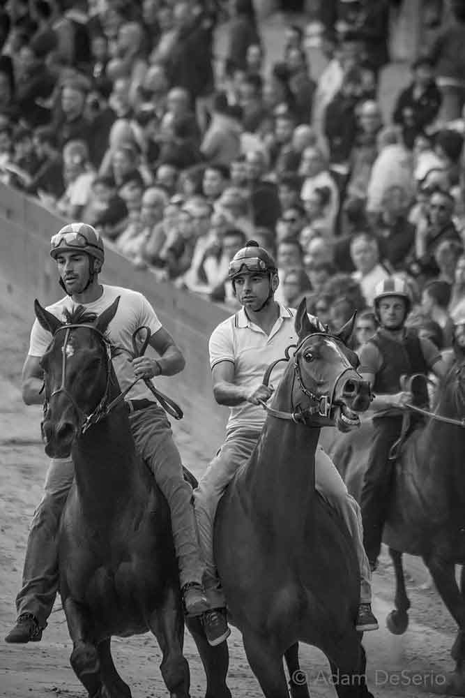 The Practice Race, Palio, Siena, Italy