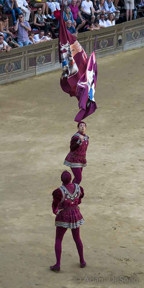 Toss The Flags, Palio, Siena, Italy