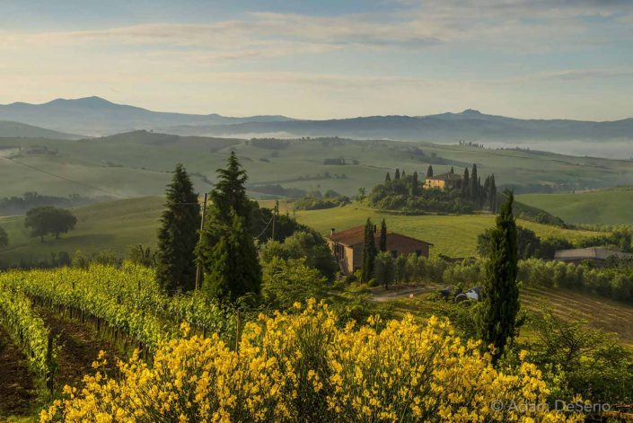 First Light On Home, Tuscany