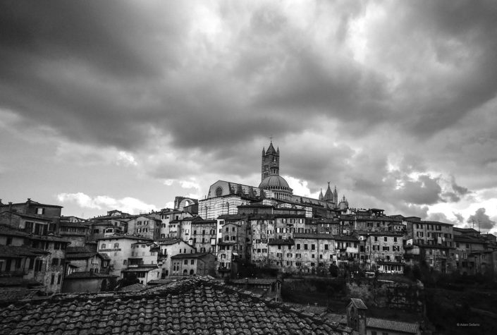 Siena Duomo Black And White, Italy