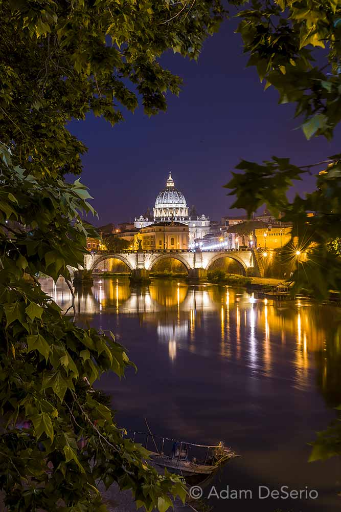 Vatican Tree View