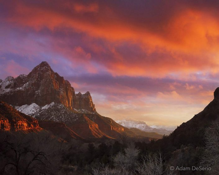 Zion At Sunset, National Park